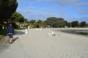 Paradise Pointe has a great beach to explore with your pooch.
